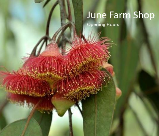 June Farm Shop Opening Times