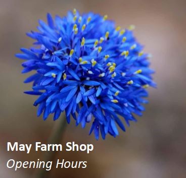 May Farm Shop Opening Hours